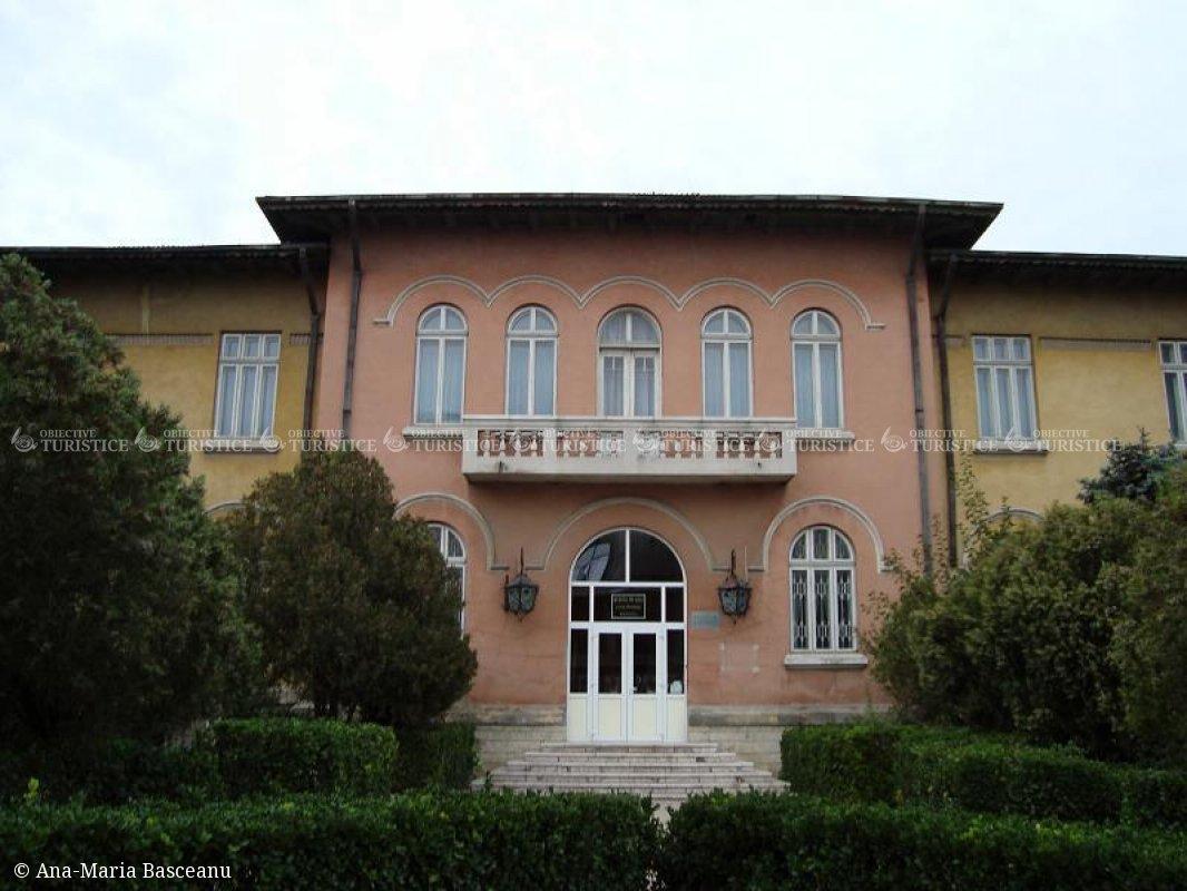 Muzeul de Arta Lucian Grigorescu