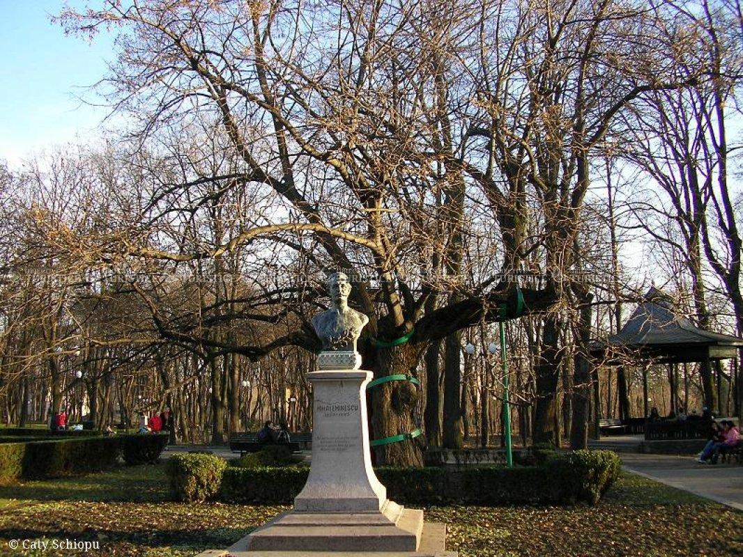 Parcul Copou - Teiul lui Eminescu