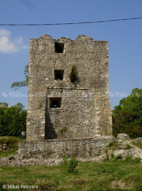 Ruinele cetatii medievale