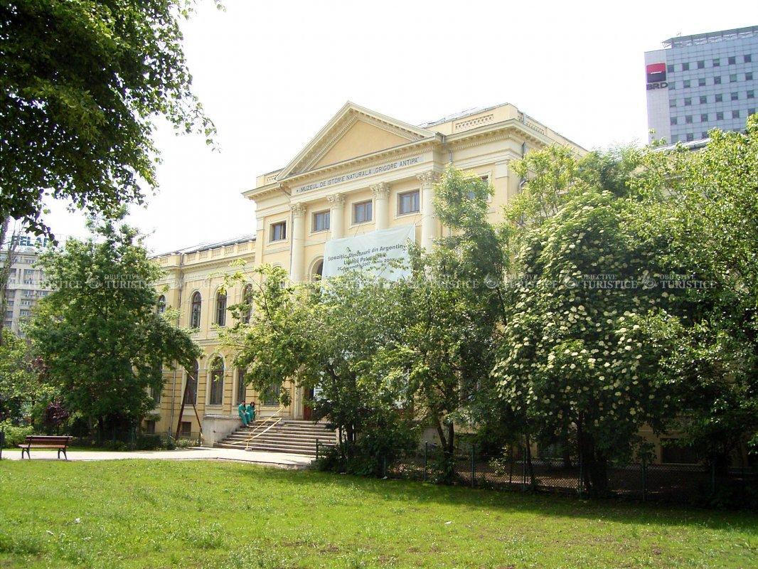 Muzeul Grigore Antipa