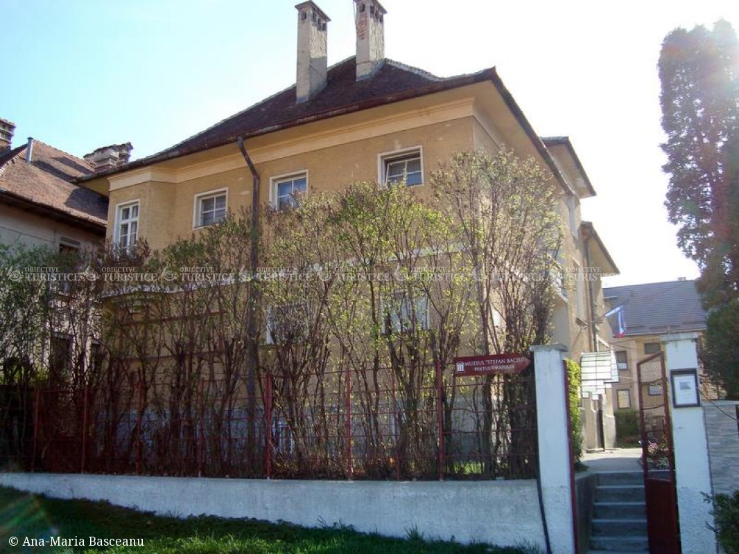 Muzeul Stefan Baciu