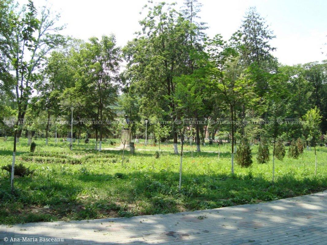 Parcul Mare