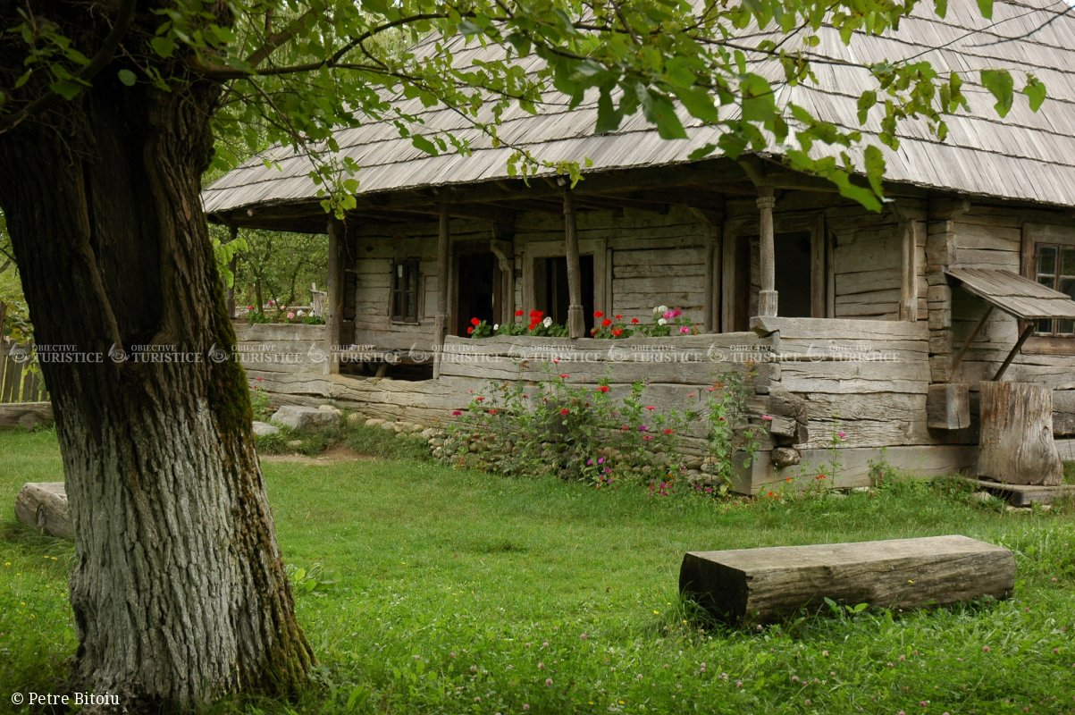Casa Memoriala Constatin Brancusi