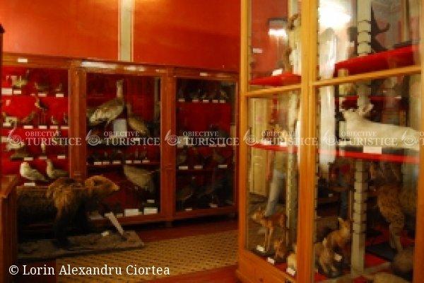 Muzeul de Stiinte ale Naturii