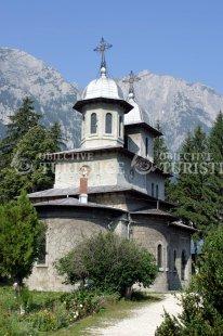 Biserica Domneasca