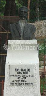Bustul lui Nicu Albu
