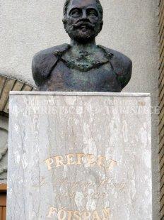 Bustul Dr. Pogany Karoly
