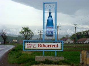 Izvoarele minerale de la Biborteni