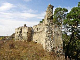 Cetatea Feldioara
