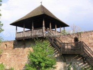 Manastirea Sfanta Treime - Strehaia