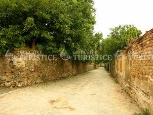 Cetatea Sebesului
